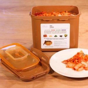 Crazy Korean Kimchi box with homemade kimchi