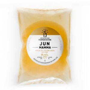 Jun scoby to make jun kombucha. Ready to sell