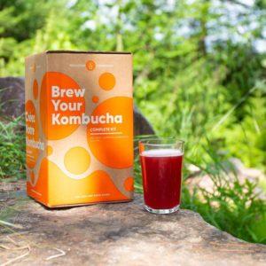 Kombucha Brewing kit to make kombucha at home