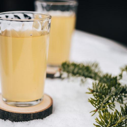 Recette de kombucha au sapin de Noël