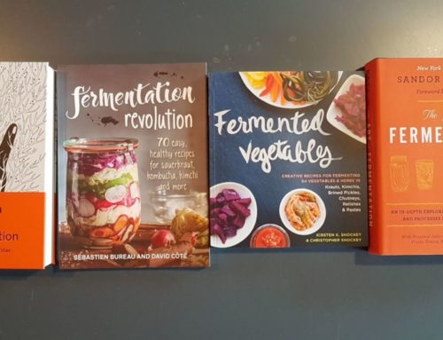 The 4 Best Fermentation Books To Get You Started