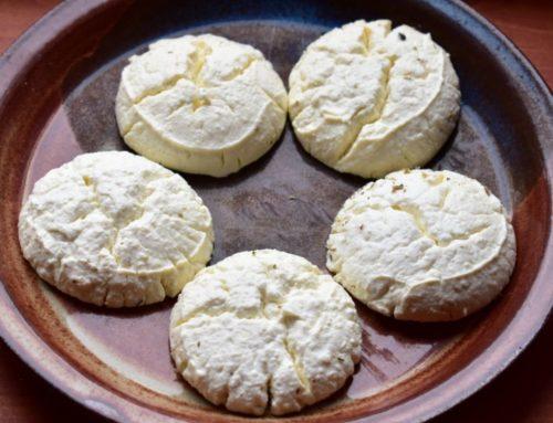 Crunchy Kefir Cheese Bites Recipe