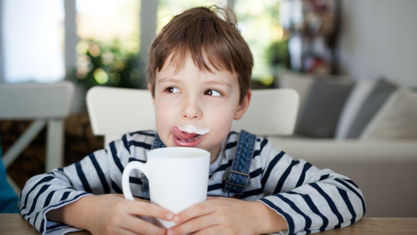 Faire du kéfir avec les différents types de lait