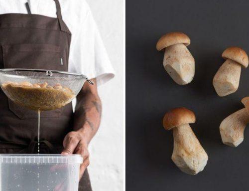 Critique du livre «Le guide de la fermentation du Noma»