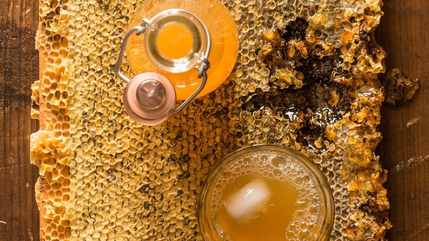 How to make jun tea, or honey kombucha