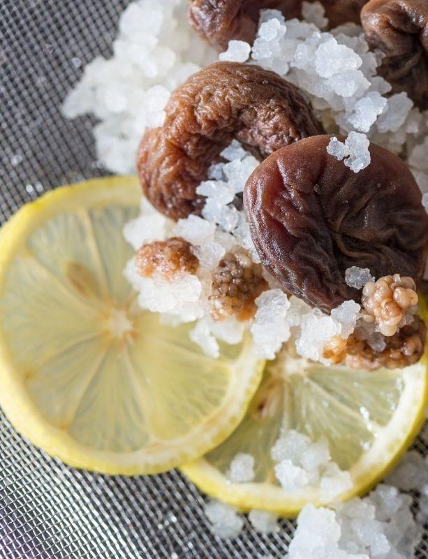 Grains de kéfir de fruits, citron et figue dans un tamis