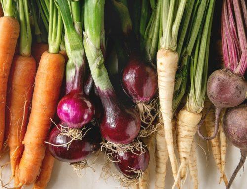 20 Winter Vegetables Fermentation Recipes