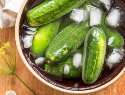 The Best Fermented Pickles Recipe