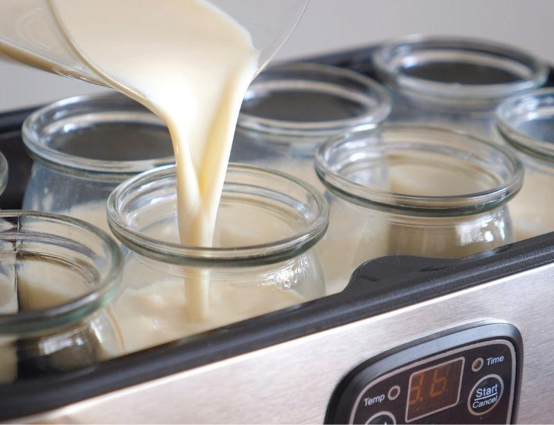 verser lait et culture dans yaourtière