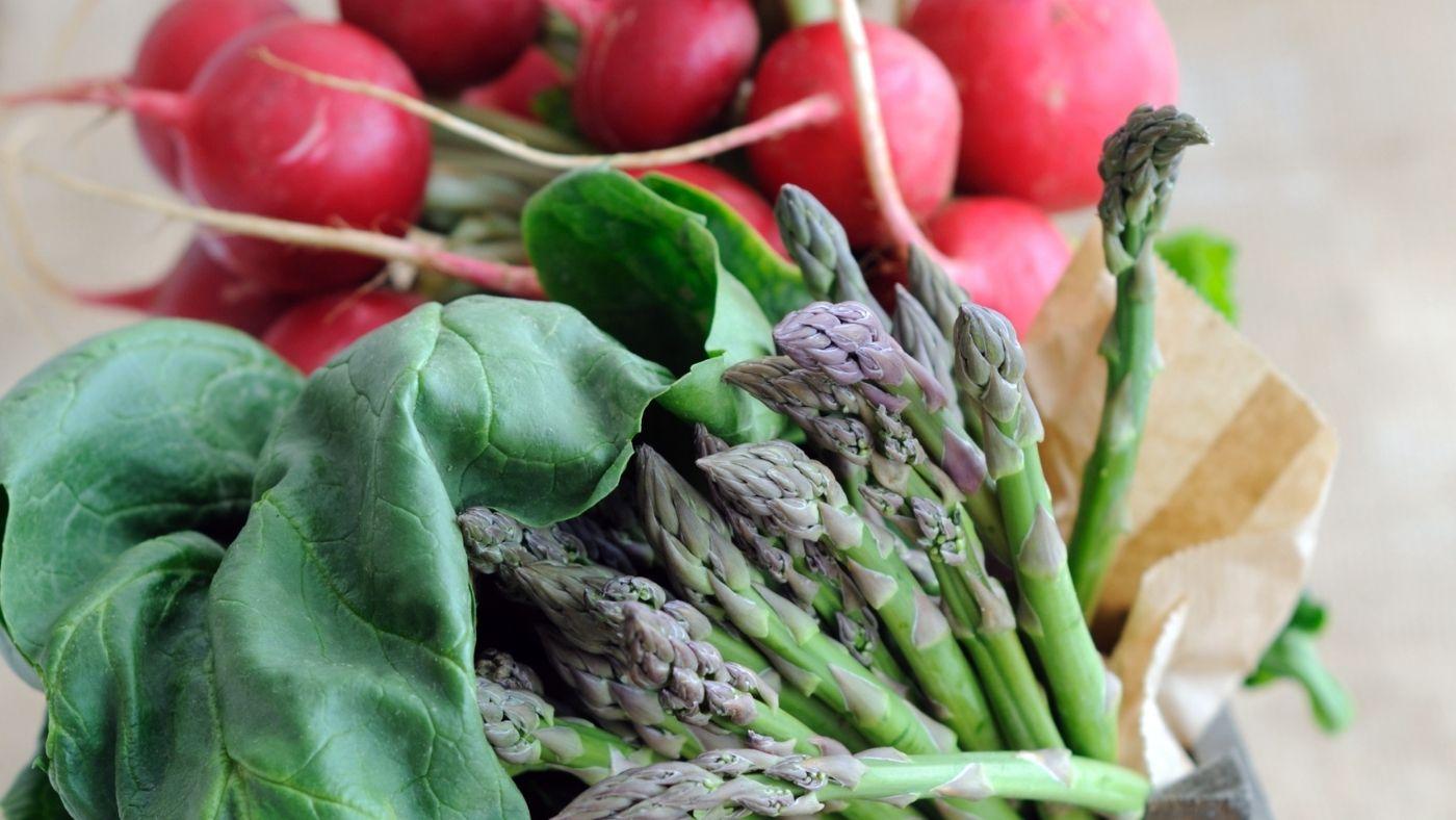 Spring Vegetables For Fermentation